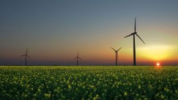 2015 Saw The Largest Global Investment In Renewable Energy -2
