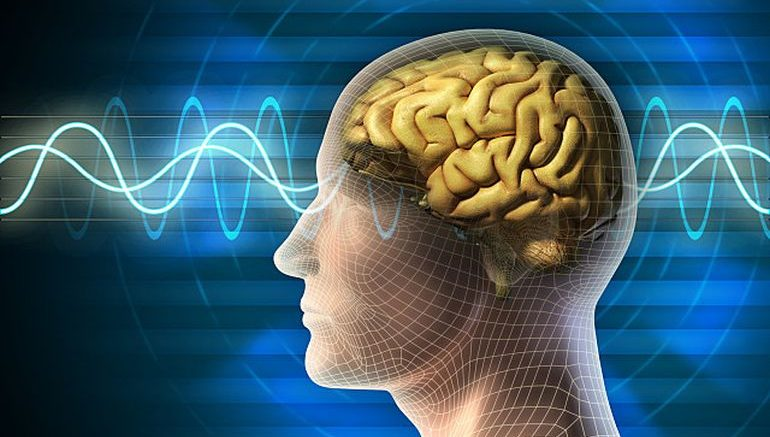 Futuristic Mind-Reading Technology Can Reconstruct Your Memories-3
