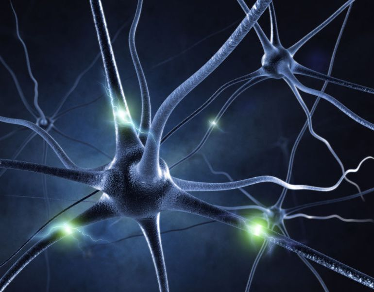 Artificially Reactivating Brain Cells Could Help Recover Lost Memories-2