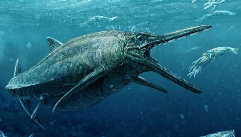 Fossil Remains Point To Scotland's Frightening Prehistoric Sea Monster-1
