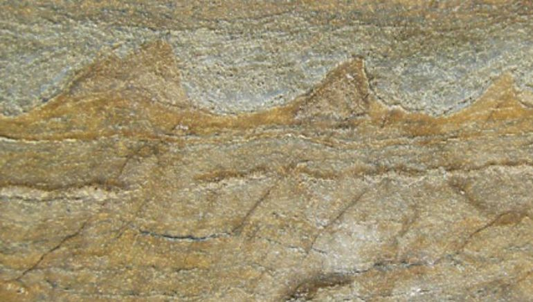 world-oldest-known-fossils-discovered_1