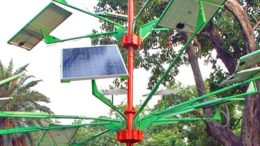 india-designed-solar-power-tree-can-light-up-to-5-houses-1