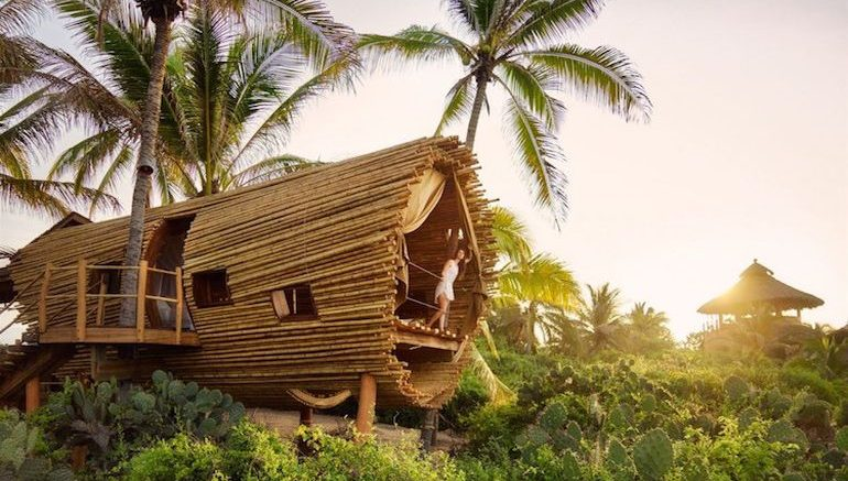 stunning cylindrical treehouse in mexico runs on solar the worlds biggest treehouse - Biggest Treehouse In The World 2014